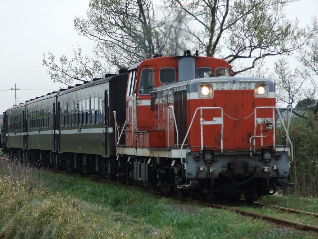 Dscf6800
